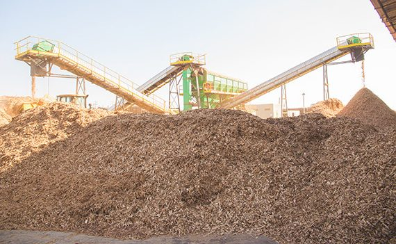 Fluxograma Biomassa