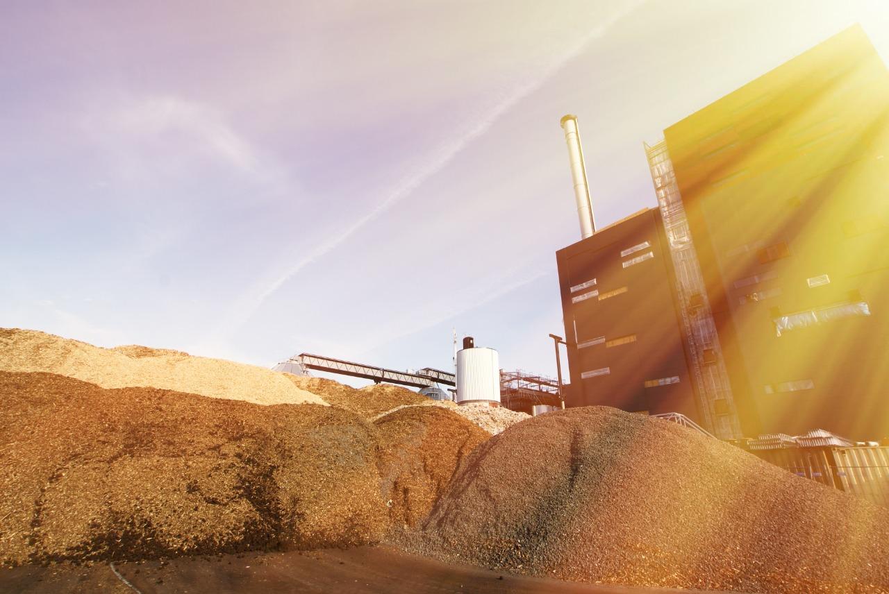 biomassa perguntas frequentes