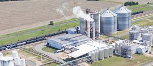 A crise energética e a biomassa